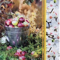 Servítky APPLE SEASON, zn. Home Fashion