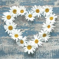 servítky  Daisy Hearts on Old Wooden Background