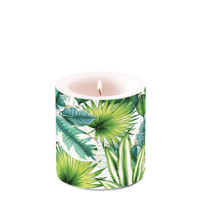 candles small TROPICAL LEAVES, Ambiente
