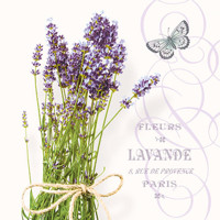 Servítky BUNCH OF LAVENDER  25x25, Ambiente