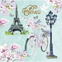 BIKE IN PARIS, Ambiente