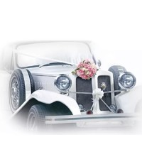 WEDDING CAR, Ambiente
