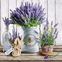 LAVENDER IN BUCKET, Paw